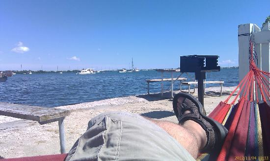 Boyd's Key West Campground: Naptime