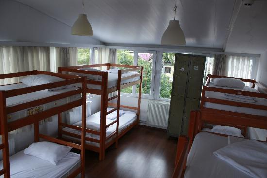 Nobel Hostel: 8 Bed Mixed Dorm Room