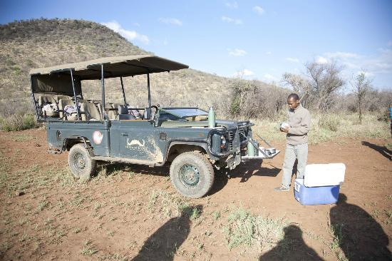 Buffalo Ridge Lodge: A break in the bush