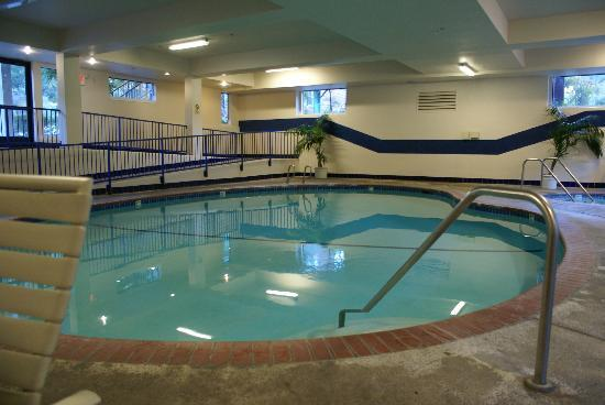 Yosemite View Lodge: Indoor Pool