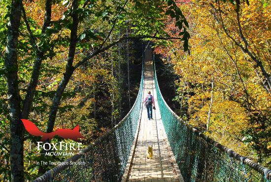 Foxfire Mountain Swinging Bridge