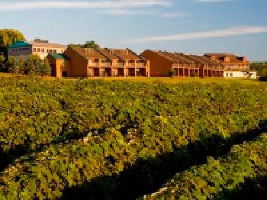 Finger Lakes Wine Country, นิวยอร์ก: Stay in a room overlooking scenic vineyards