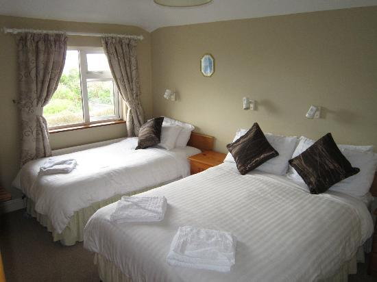 Clare Manor Bed and Breakfast Photo