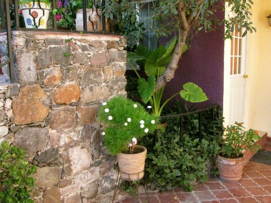Casa de Aparicio: Gardens