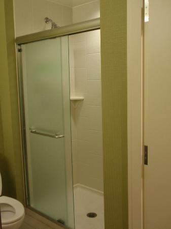 Home2 Suites by Hilton Lexington Park Patuxent River Nas, Md: Standing Shower