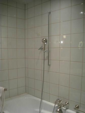 Gasthof Löwen: Shower in tub