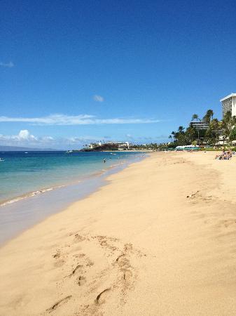 Hyatt Regency Maui Resort And Spa Beach In Front Of Kaanapali Ali