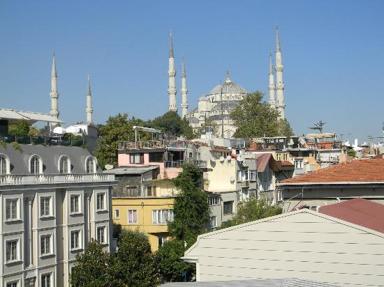 Albinas Hotel : Vista do terraço