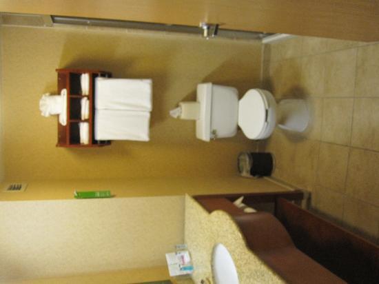 Hampton Inn Erie-South: standard hampton inn bathroom