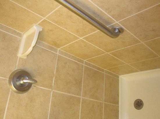 Hampton Inn Erie-South: basic, clean shower