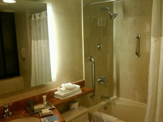 Hilton Manhattan East: Large Bath