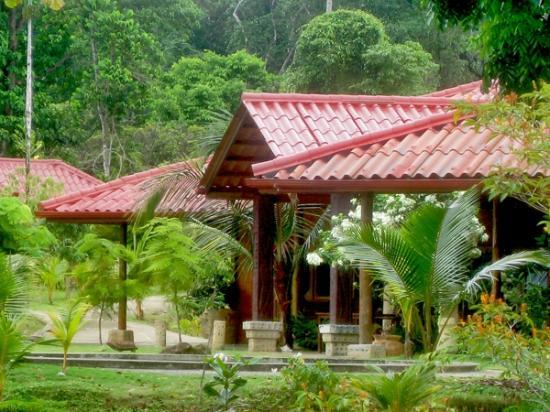 Popa Paradise Beach Resort: Club house, set against back drop of unspoiled rain forest.
