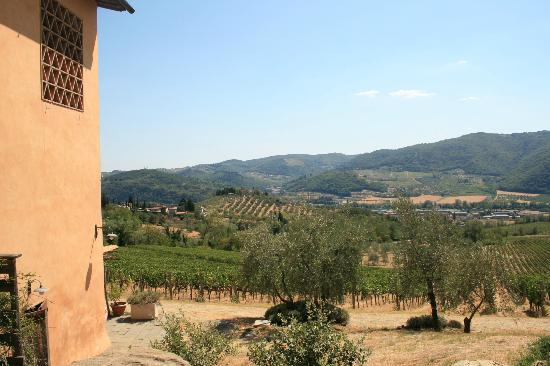 Agriturismo I Veroni: View right outside our room