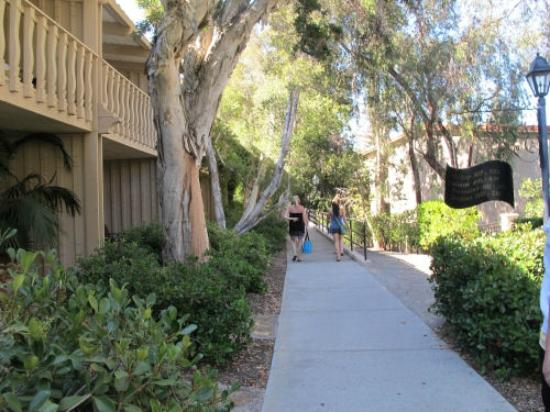 Rancho Bernardo Inn: Walkways near some of the rooms