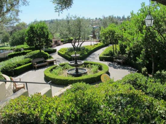 Rancho Bernardo Inn: Buena Vista Terrace