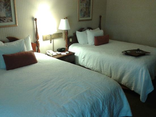 Hampton Inn Erie-South: room