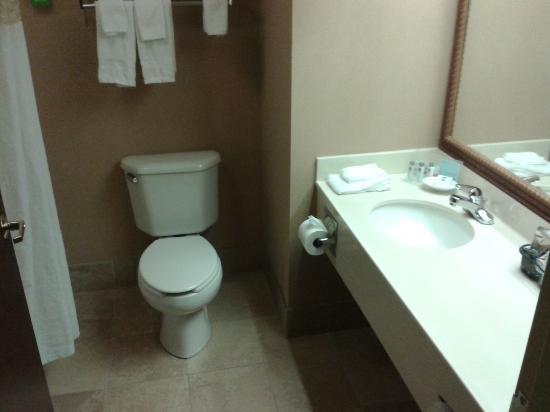 Hampton Inn Erie-South: bathroom