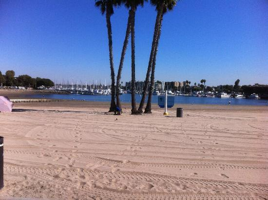Jamaica Bay Inn: Mother's Beach, Marina Del Rey, CA