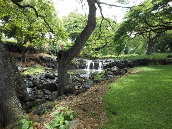 Lili'uokalani Botanical Garden: Lili' uokalani Botanical Garden park