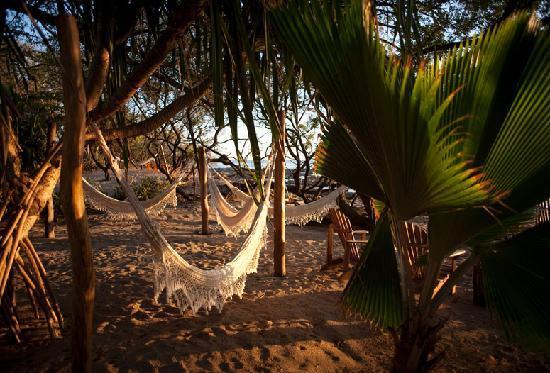 Sueno del Mar Beachfront Bed & Breakfast : Hammocks on the beach.