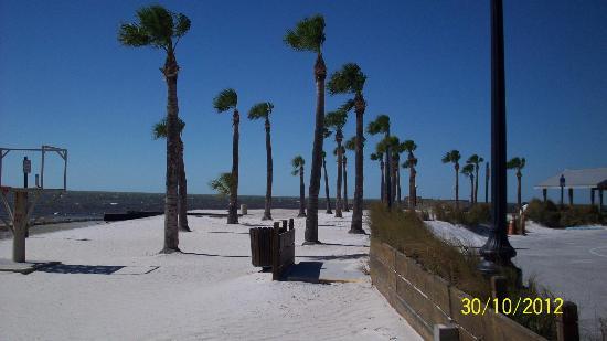 Pine Island Park Beach