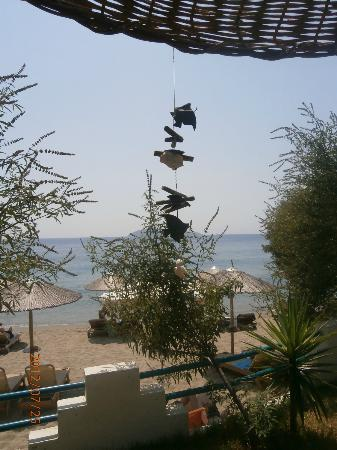 Angeliki Beach Hotel: Beautiful details all around the garden