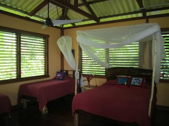 Casa Cayuco : Delphin cabin interior