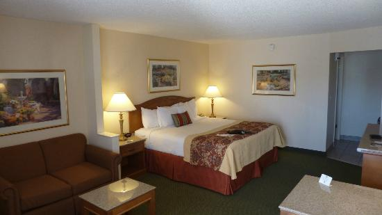 Best Western Plus A Wayfarer's Inn and Suites: Lovely room!