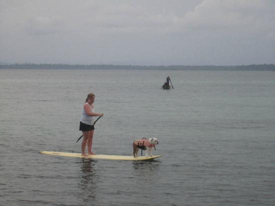 Casa Cayuco: Paddleboarding with Angus