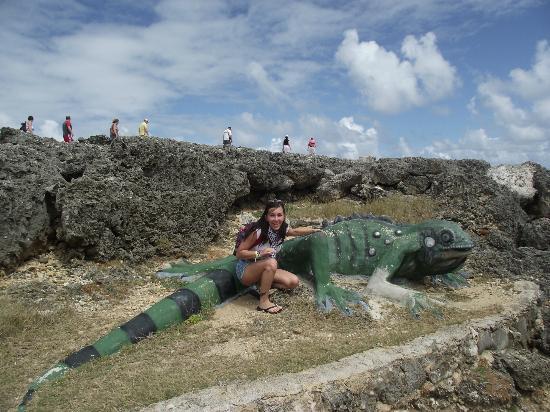 Shete Boka National Park: lagarto escultura