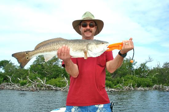 Tarpon Lodge Restaurant: redfish #2