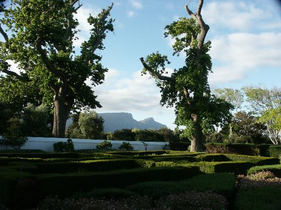 Steenberg Hotel: View from the room and patio