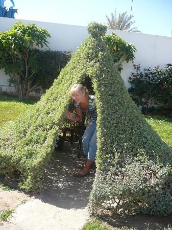 فندق المغار جاردن بيتش: The Secret Garden...