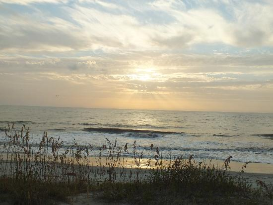 Hampton Inn & Suites Jekyll Island: Beach at sunrise
