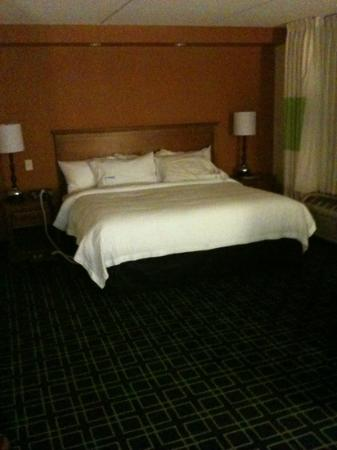 Fairfield Inn & Suites Valdosta: king bed, very comfy