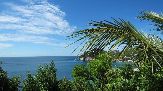 Jamahkiri Resort & Spa: View from the pool area.