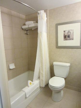 Hilton Garden Inn Fargo: good strong shower