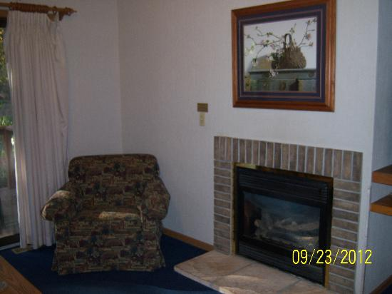 Christmas Mountain Village: Living room with fireplace in 2 bedroom/2 bath cottage