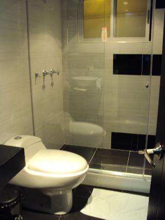 Radel Bogota Hotel: baño