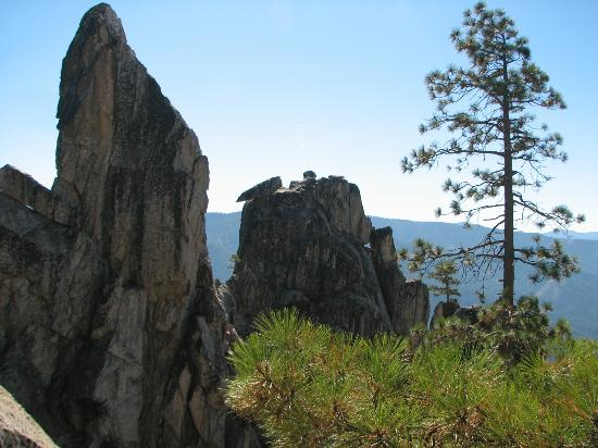 Castle Crags State Park: sentinel rocks and tree
