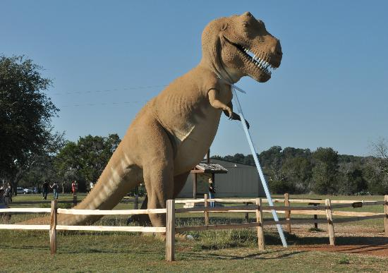 "Dinosaur Valley State Park: This t-rex needs a ""cane"" to remain upright!"