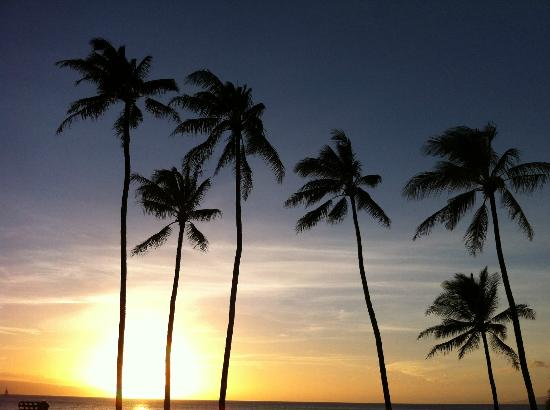 Mahina Surf: sunset