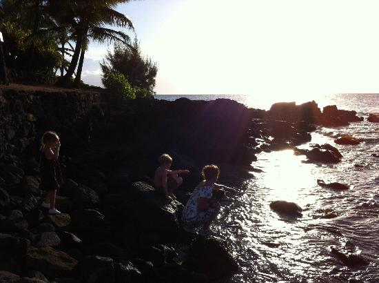Right beside the Mahina Surf