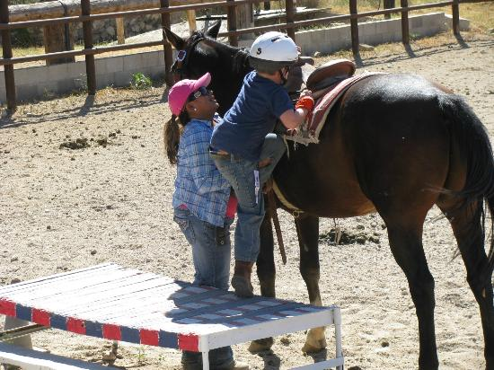 Tanque Verde Ranch: 5 year old buckaroo