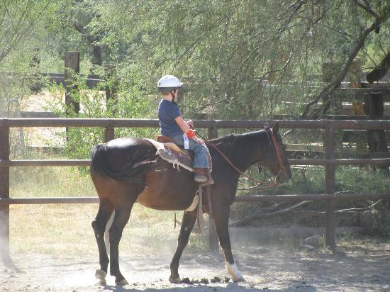 Tanque Verde Ranch : Children's riding program - first time rider