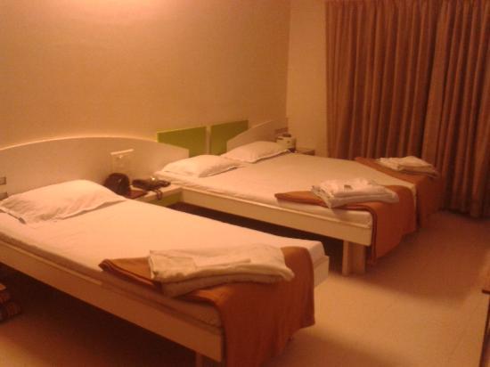 Hotel Rajmahal: Room