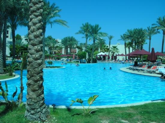 Grand Rotana Resort & Spa: the pool