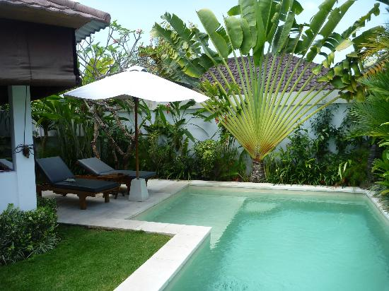 Dyana Villas: Love this pool...