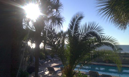 Ocean Isle Inn: Overlooking the pool