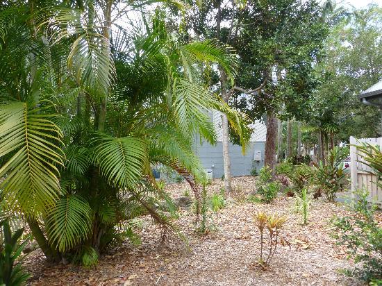 Bayshore Bungalows: Grounds